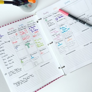 week 1 lesson plan